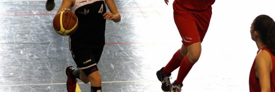 Championnat de France Écoles Basket-Ball 2016 (CFE Basket Grenoble 2016)